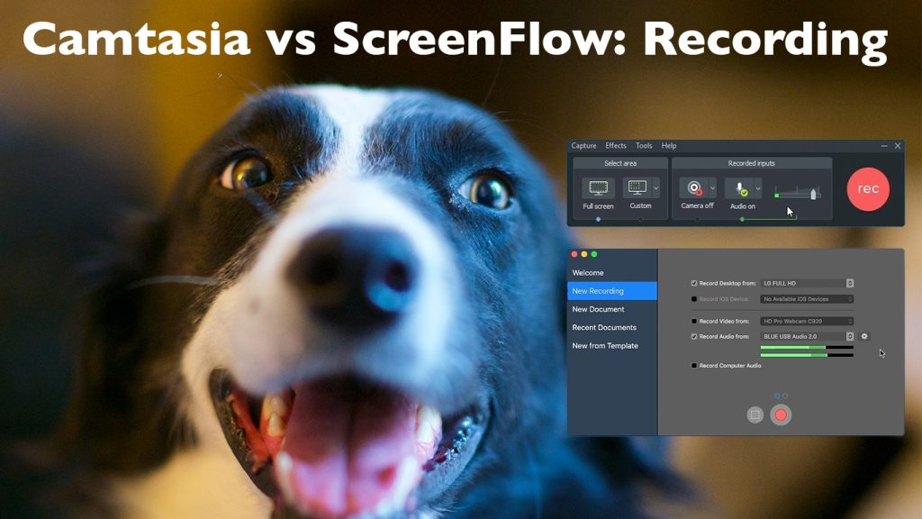 Phoebe the border collie looks at the recorders for Camtasia 2018 and ScreenFlow 8 with the text Camtasia vs ScreenFlow: Recording